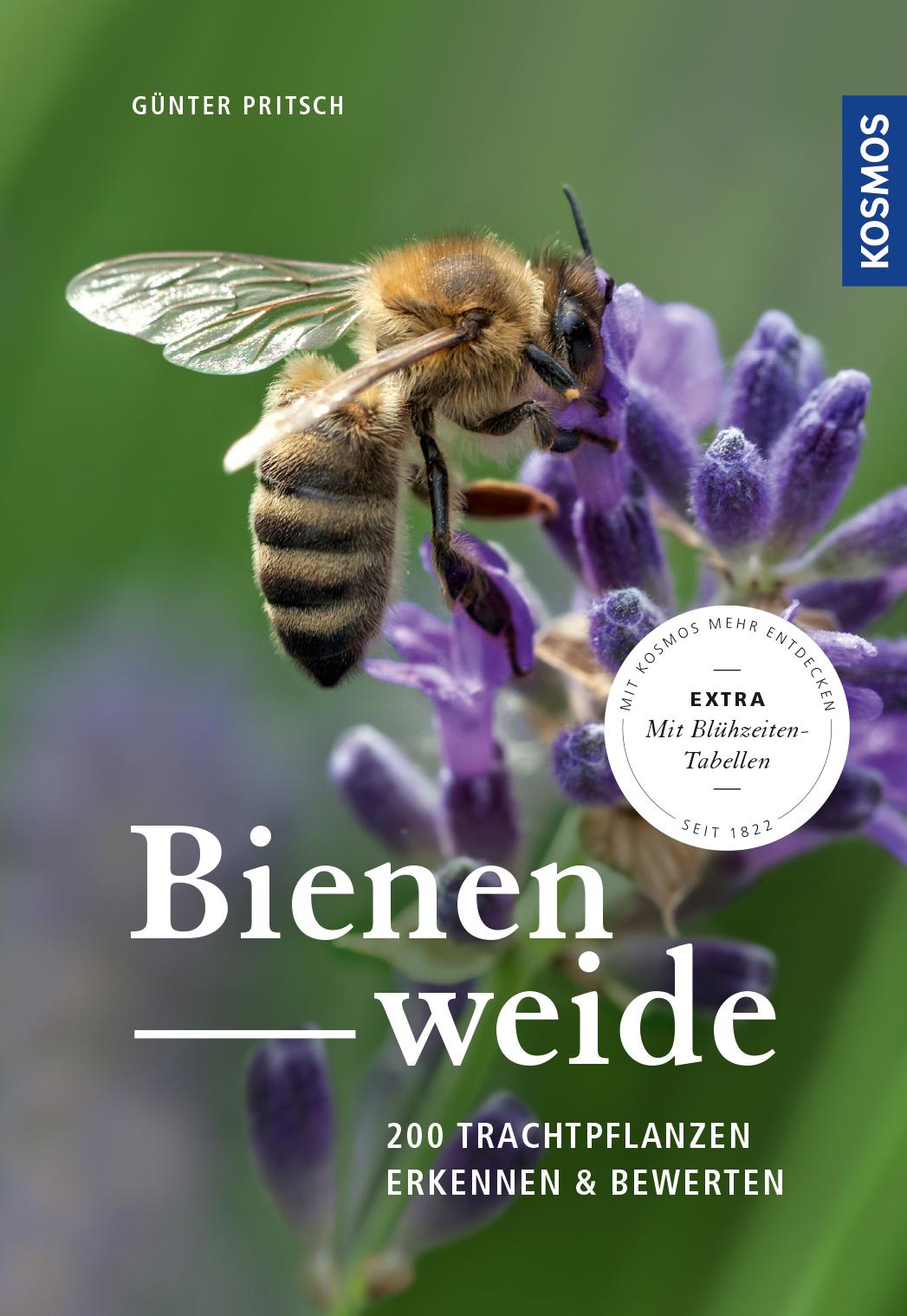 Pritsch_Bienenweide_tif_web-jpg.indd